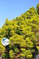 GriechenlandWeb.de Limnonari Agnontas | Skopelos Sporaden | GriechenlandWeb.de foto 9 - Foto GriechenlandWeb.de
