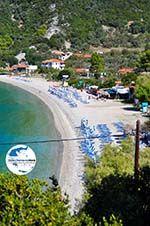 GriechenlandWeb.de Panormos Skopelos | Sporaden | GriechenlandWeb.de foto 3 - Foto GriechenlandWeb.de