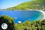 GriechenlandWeb.de Panormos Skopelos | Sporaden | GriechenlandWeb.de foto 7 - Foto GriechenlandWeb.de