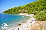 GriechenlandWeb.de Panormos Skopelos | Sporaden | GriechenlandWeb.de foto 10 - Foto GriechenlandWeb.de
