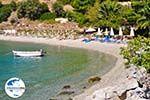 GriechenlandWeb.de Panormos Skopelos | Sporaden | GriechenlandWeb.de foto 11 - Foto GriechenlandWeb.de