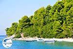 GriechenlandWeb.de Panormos Skopelos | Sporaden | GriechenlandWeb.de foto 13 - Foto GriechenlandWeb.de