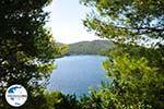 GriechenlandWeb.de Panormos Skopelos | Sporaden | GriechenlandWeb.de foto 16 - Foto GriechenlandWeb.de