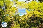 Milia | Skopelos Sporaden | GriechenlandWeb.de foto 1 - Foto GriechenlandWeb.de