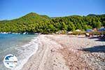 GriechenlandWeb.de Milia | Skopelos Sporaden | GriechenlandWeb.de foto 11 - Foto GriechenlandWeb.de