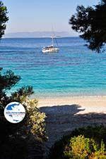 GriechenlandWeb.de Kastani | Skopelos Sporaden | GriechenlandWeb.de foto 2 - Foto GriechenlandWeb.de