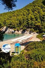 GriechenlandWeb.de Kastani   Skopelos Sporaden   GriechenlandWeb.de foto 5 - Foto GriechenlandWeb.de