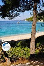 GriechenlandWeb.de Kastani | Skopelos Sporaden | GriechenlandWeb.de foto 7 - Foto GriechenlandWeb.de