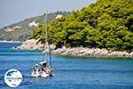 GriechenlandWeb.de Kastani | Skopelos Sporaden | GriechenlandWeb.de foto 9 - Foto GriechenlandWeb.de