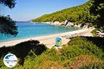 GriechenlandWeb.de Kastani | Skopelos Sporaden | GriechenlandWeb.de foto 10 - Foto GriechenlandWeb.de