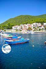GriechenlandWeb.de Klima-Elios und Hovolo | Skopelos Sporaden | GriechenlandWeb.de foto 5 - Foto GriechenlandWeb.de