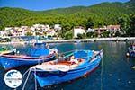 GriechenlandWeb.de Klima-Elios und Hovolo | Skopelos Sporaden | GriechenlandWeb.de foto 6 - Foto GriechenlandWeb.de