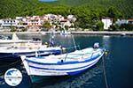 GriechenlandWeb.de Klima-Elios und Hovolo | Skopelos Sporaden | GriechenlandWeb.de foto 8 - Foto GriechenlandWeb.de