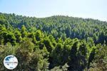 GriechenlandWeb.de Palio Klima (Oud Klima)   Skopelos Sporaden   GriechenlandWeb.de foto 2 - Foto GriechenlandWeb.de