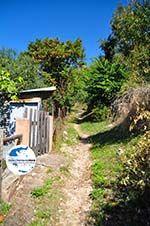 GriechenlandWeb.de Palio Klima (Oud Klima)   Skopelos Sporaden   GriechenlandWeb.de foto 16 - Foto GriechenlandWeb.de