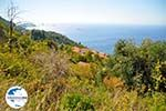 GriechenlandWeb.de Palio Klima (Oud Klima) | Skopelos Sporaden | GriechenlandWeb.de foto 18 - Foto GriechenlandWeb.de
