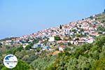 GriechenlandWeb Glossa | Skopelos Sporaden | GriechenlandWeb.de foto 2 - Foto GriechenlandWeb.de