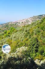 GriechenlandWeb.de Glossa | Skopelos Sporaden | GriechenlandWeb.de foto 3 - Foto GriechenlandWeb.de