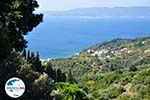 GriechenlandWeb Glossa | Skopelos Sporaden | GriechenlandWeb.de foto 4 - Foto GriechenlandWeb.de