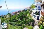 GriechenlandWeb Glossa | Skopelos Sporaden | GriechenlandWeb.de foto 12 - Foto GriechenlandWeb.de