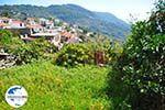 GriechenlandWeb.de Glossa | Skopelos Sporaden | GriechenlandWeb.de foto 17 - Foto GriechenlandWeb.de