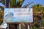 GriechenlandWeb.de Agios Ioannis Kastri | Mamma Mia kerkje Skopelos | Sporaden Griekse Gids 23 - Foto GriechenlandWeb.de