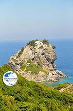 GriechenlandWeb Agios Ioannis Kastri | Mamma Mia kerkje Skopelos | Sporaden Griekse Gids 28 - Foto GriechenlandWeb.de