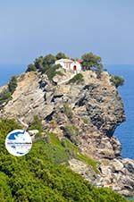 GriechenlandWeb.de Agios Ioannis Kastri | Mamma Mia kerkje Skopelos | Sporaden Griekse Gids 30 - Foto GriechenlandWeb.de