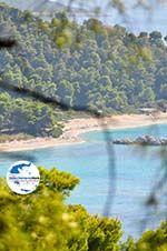 GriechenlandWeb.de Bij de stranden Kastani und Milia | Skopelos Sporaden | GriechenlandWeb.de foto 1 - Foto GriechenlandWeb.de