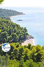GriechenlandWeb.de Strände Kastani und Milia |Skopelos Sporaden | GriechenlandWeb.de foto 3 - Foto GriechenlandWeb.de