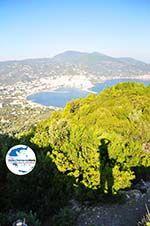 GriechenlandWeb.de Panoramafoto Skopelos Stadt | Sporaden | GriechenlandWeb.de foto 5 - Foto GriechenlandWeb.de