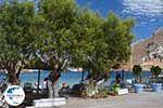 GriechenlandWeb.de Pedi - Symi Dodekanes foto 25 - Foto GriechenlandWeb.de
