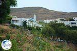 GriechenlandWeb.de Aetofolia und Kalloni Tinos | Griechenland | Foto 4 - Foto GriechenlandWeb.de