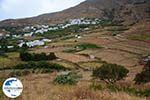 Karkados und Kalloni Tinos | Griechenland | Foto 1 - Foto GriechenlandWeb.de