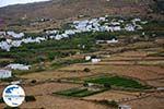 GriechenlandWeb.de Karkados und Kalloni Tinos | Griechenland | Foto 2 - Foto GriechenlandWeb.de