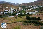 GriechenlandWeb.de Karkados und Kalloni Tinos | Griechenland | Foto 4 - Foto GriechenlandWeb.de