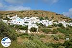 GriechenlandWeb.de Agapi Tinos | Griechenland | GriechenlandWeb.de foto 11 - Foto GriechenlandWeb.de