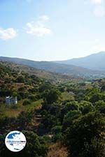 GriechenlandWeb.de Agapi Tinos - Foto GriechenlandWeb.de