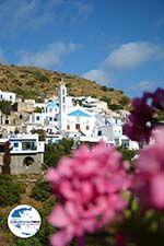 GriechenlandWeb.de Agapi Tinos | Griechenland | GriechenlandWeb.de foto 19 - Foto GriechenlandWeb.de