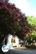 GriechenlandWeb.de Agapi Tinos | Griechenland | GriechenlandWeb.de foto 23 - Foto GriechenlandWeb.de
