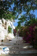 GriechenlandWeb.de Agapi Tinos | Griechenland | GriechenlandWeb.de foto 24 - Foto GriechenlandWeb.de