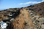 GriechenlandWeb.de Badplaats Aghios Fokas ten oosten van Tinos Stadt | Foto 3 - Foto GriechenlandWeb.de