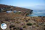 GriechenlandWeb.de Badplaats Aghios Fokas ten oosten van Tinos Stadt | Foto 6 - Foto GriechenlandWeb.de