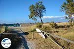GriechenlandWeb.de Aghios Sostis Tinos | Griechenland foto 36 - Foto GriechenlandWeb.de