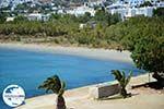 GriechenlandWeb.de Agios Ioannis Porto | Tinos Griechenland foto 18 - Foto GriechenlandWeb.de