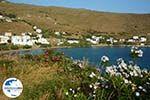 GriechenlandWeb.de Agios Romanos Tinos | Griechenland | Foto 10 - Foto GriechenlandWeb.de