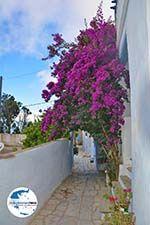 GriechenlandWeb.de Arnados Tinos | Griechenland | Foto 9 - Foto GriechenlandWeb.de