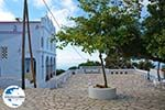 GriechenlandWeb.de Arnados Tinos | Griechenland | Foto 16 - Foto GriechenlandWeb.de