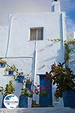 GriechenlandWeb.de Arnados Tinos | Griechenland | Foto 18 - Foto GriechenlandWeb.de