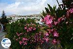 GriechenlandWeb Falatados Exomvourgo Tinos | Griechenland | Foto 5 - Foto GriechenlandWeb.de